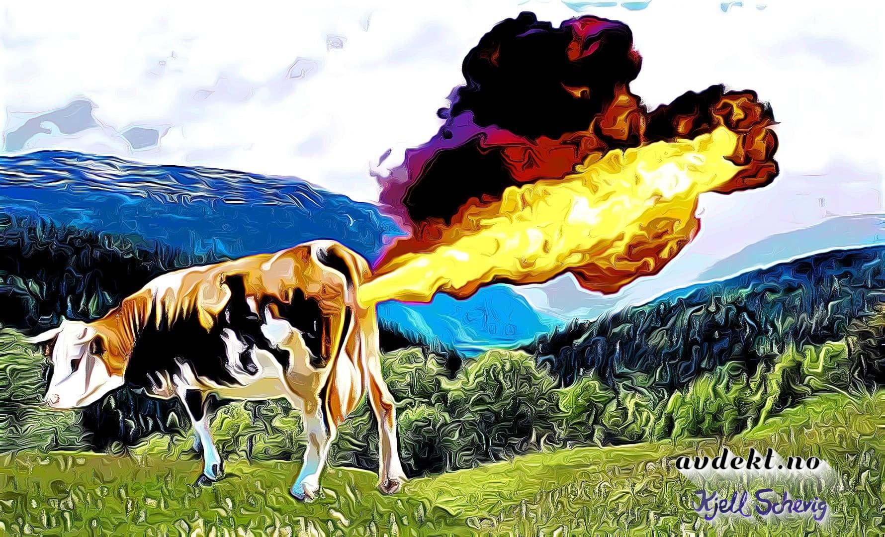 Skaper kua klimakrise?